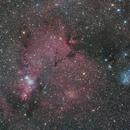 NGC2264 Cone nebula, Trumpler5, IC2169,                                Marukawa
