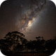 Winter Milky Way rising in the Central Wheatbelt,                                Roger Groom