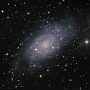 NGC 2403,                                Frank Colosimo