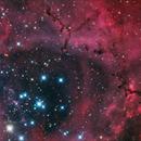 Ngc 2244 - The Rosette Nebula,                                Salvatore Grasso