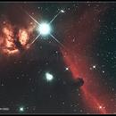 IC343 Testa du cavallo-NGC2024 Fiamma,                                marioper
