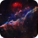 NGC1499 - California Neb WISE IRSA - 5 frames mosaic,                                Francesco Antonucci