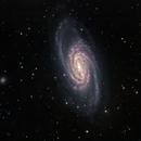 NGC 2903,                                Greg Allegretti