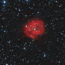 IC5146 Bicolor,                                Musse