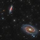M81 - M82,                                Richy Astro Imaging LLC