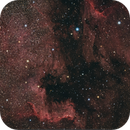 Nordamerikanebel mit Pelikannebel (RGB),                                Markus Gorski