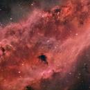 California Nebula (NGC 1499) in false natural look,                                pete_xl