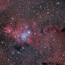 Cone nebula,                                casamoci