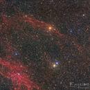 Under the Wings of Cygnus LBN 331,                                Niko Geisriegler
