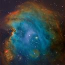 NGC 2174 Monkey Head Nebula,                                Dale A Chamberlain