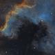 ngc 7000 - north america nebula in SHO,                                John Mart