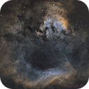 NGC7822 Cederblad 214 SH-171 HST palette,                                Barry Wilson