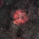 IC1396 wide field,                                Frigeri Massimiliano