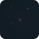 M102 - Spindle Galaxy,                                Erik Marsh