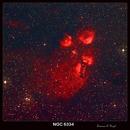 NGC 6334-The Cat's Paw Nebula,                                Lawrence E. Hazel