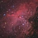 M16 - Eagle Nebula,                                Martin Junius
