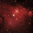 Cone Nebula NGC 2264,                                Starman609