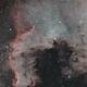NGC7000 - The North America Nebula,                                rickt