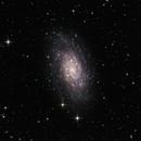 NGC 2403,                                Steve Eltz