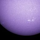 The Calcium H line Sun,                                John O'Neal, NC S...