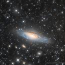NGC7331 ,                                Elio - fotodistelle.it