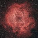NGC 2237,                                  Marco Rapino