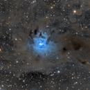 NGC 7023 Iris nebula,                                Michael