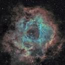 NGC 2237 - Rosette nebula (Ha-SHO),                                Olivier Ravayrol