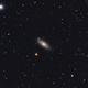 NGC 2841, galassia a spirale,                                Giuseppe Nicosia
