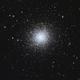 M13 global cluster,                                mayapple