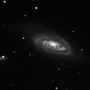 NGC 4569,                                Günther Eder