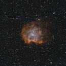 NGC 2174 Bi-Color,                                cclark