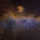Sharpless in Monoceros - The Seagull Nebula [Sh2_292, Sh2_296, Sh2_297] in SHO,                                G400