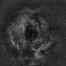 Rosette nebula,                                sumukh208