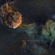 IC443 - The Jellyfish Nebula: a supernova remnant in Gemini,                                Giulio