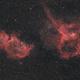 IC 1805 + IC 1795  @ 200mm,                                Cyril Richard