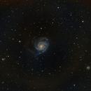 M101,                                tdsdmd