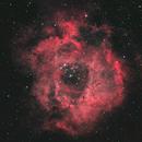 Rosette Nebula (Caldwell 49) in HOO,                                JNeil