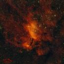 The Prawn Nebula (IC4628),                                Ivan Hancock