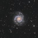 M74 - LRGB,                                Martin Dufour