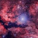IC1318 - The Gamma Cygni Nebula 3 Frame Mosaic (Amateur RGB, POSS-II),                                Oliver Czernetz