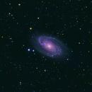 M81 - Galaxie de Bode,                                Ludovic