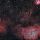 M8 in HaLRGB (wide field),                                Craig Prost