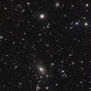 NGC6166 (Abell2199),                                Kaori Iwakata