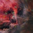 M42 Orion Nebula,                                Michel Lakos M.