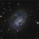 Ngc 4395,                                sky-watcher (johny)