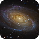 M81 - LRGB (also HaLRGB version),                                RAMON ESPAX