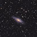 NGC 7331 - Deer Lick Group,                                Tim