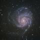 M101 - the Pinwheel,                                Gianni Cerrato