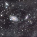 M81, M82 with IFN in LRGB,                                Thomas Hellwing